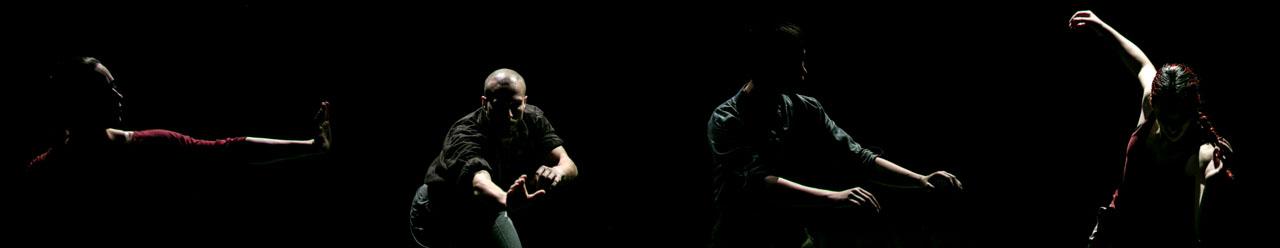 """CONTINUUM coreografie e set concept Matthias Kass & Clement Bugnon Danzatori Serena Angelini , Beatrice Netti , Nicola Depascale , Antonella Albanese Parliamo di tempo costante. """"Hai tempo per parlare con me """" o """" non ho abbastanza tempo per finire il lavoro """" e così via. Quello di cui realmente parliamo è la durata , il tempo necessario tra l'alba e il tramonto, per esempio. Il tempo è quindi una cosa reale e possiamo sperimentare il trascorrere del tempo in un modo concreto quasi come se fosse un oggetto tangibile. Ma quando i tempi si allungano, diventa sempre più difficile da comprendere. Il tempo di vita tra la nostra nascita e la morte è in realtà difficile da afferrare veramente. Ci svegliamo ogni mattina e andiamo a letto ogni sera, ma abbiamo davvero sperimentato come il nostro tempo si sta lentamente esaurendo?"""