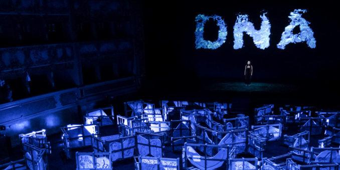 Fenix DNA